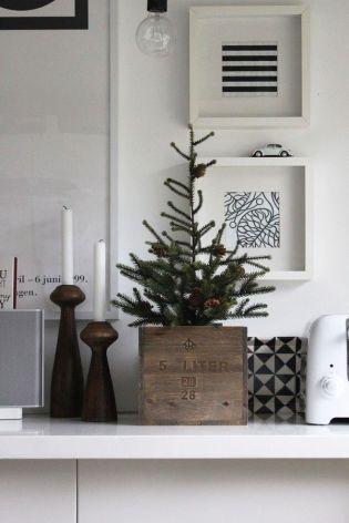 Navidad 22