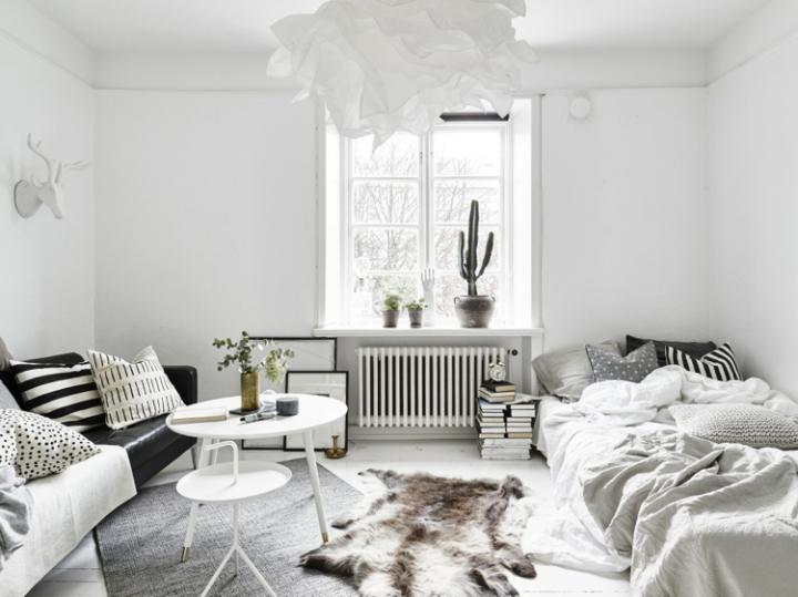 Monoambiente blanco y negro 2