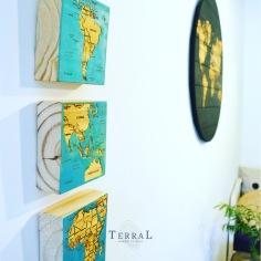 terral-6